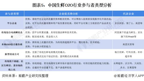 图表5:中国生鲜O2O行业参与者类型分析