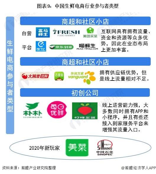 图表9:中国生鲜电商行业参与者类型