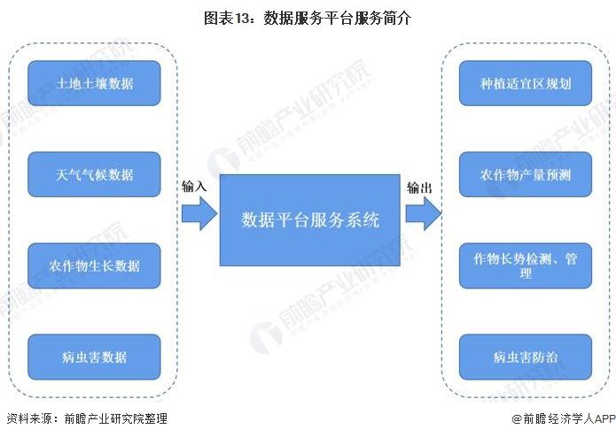 图表13:数据服务平台服务简介
