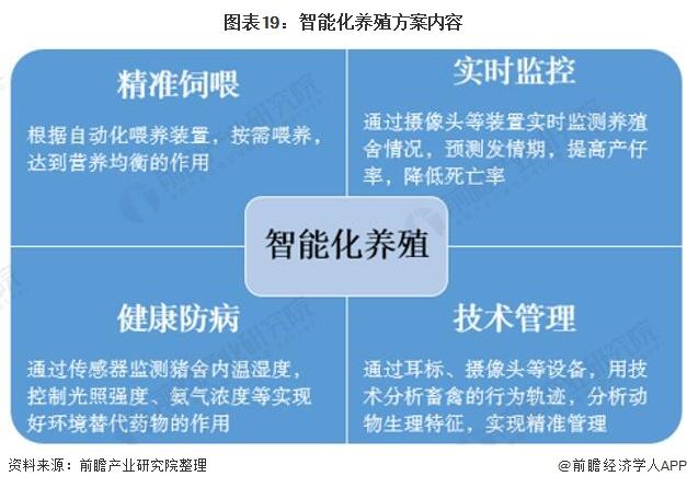 图表19:智能化养殖方案内容