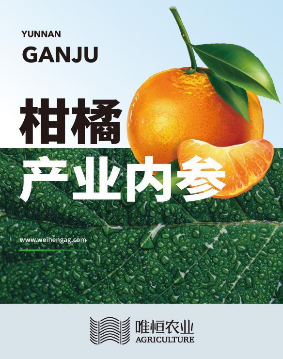 柑橘产业内参