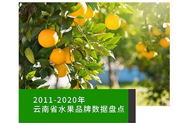 《云果:2011-2020年云南省水果品牌数据盘点》