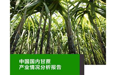 《云果:中国甘蔗产业分析报告》》