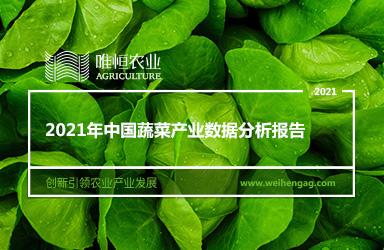 《唯恒农业:2021年中国蔬菜产业数据分析报告》