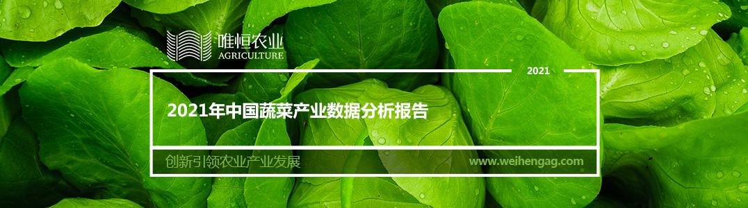 2021年中国蔬菜产业数据分析报告