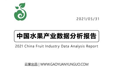 《云果:中国水果产业数据分析报告》