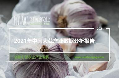 《唯恒农业:2021年中国大蒜产业数据分析报告》