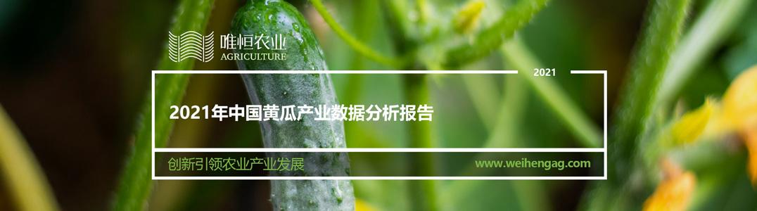 2021年中国黄瓜产业数据分析报告