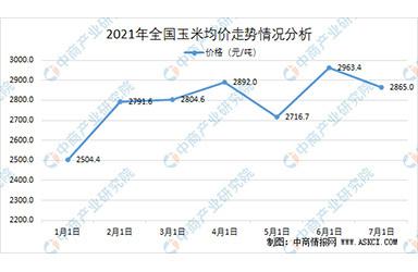 上半年玉米价格走高 2021年中国玉米市场供需形势分析