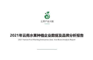 《云果:2021年云南水果种植企业数据及品牌分析报告》