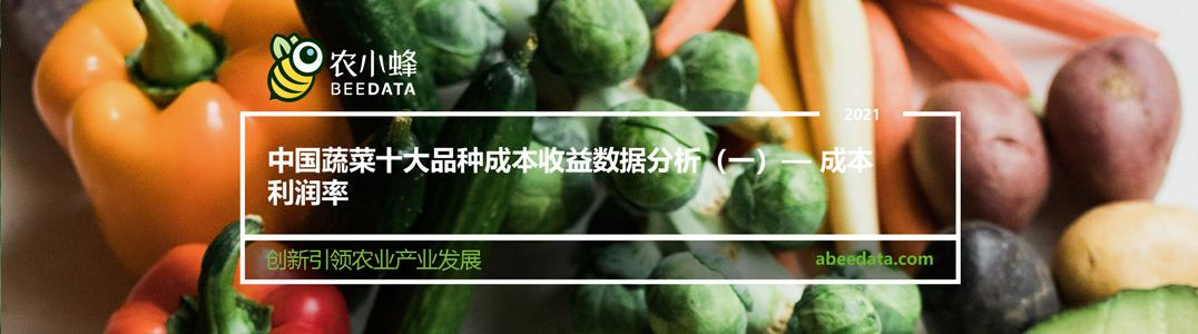 中国蔬菜十大品种成本收益数据分析