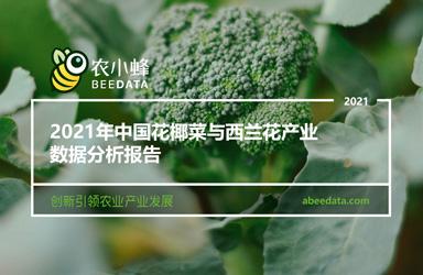 《农小蜂:2021年中国花椰菜与西兰花产业数据分析报告》