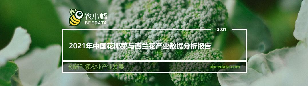 2021年中国花椰菜与西兰花产业数据分析报告