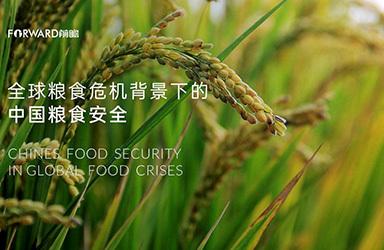 《前瞻产业研究院:全球粮食危机背景下的中国粮食安全》