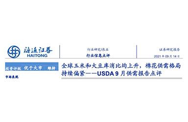 《海通证券:USDA9月供需报告点评-全球玉米和大豆库消比均上升,棉花供需格局持续偏紧》