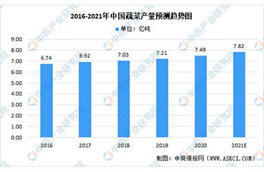 2021年中国蔬菜及其加工产品行业市场规模预测分析