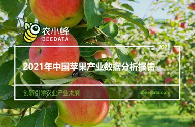 《云果&农小蜂:2021年中国苹果产业数据分析报告》