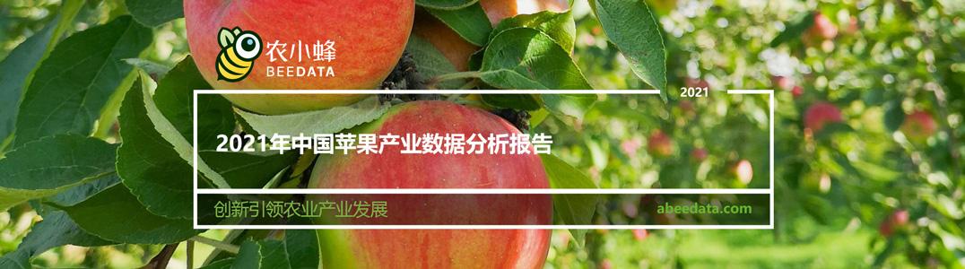 2021年中国苹果产业数据分析报告